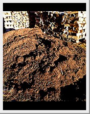 compost from Graceful Gardens